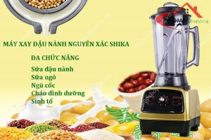 tim-hieu-ve-may-xay-sinh-to-cong-suat-2200w-1